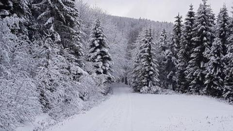 Snieg w Krynicy-Zdrój