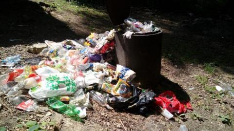 Koszmar! Niedługo będzie tu więcej śmieci niż drzew [WIDEO]