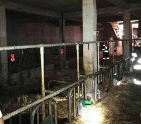 W Przydonicy paliła się stajnia. W budynku było 50 sztuk bydła