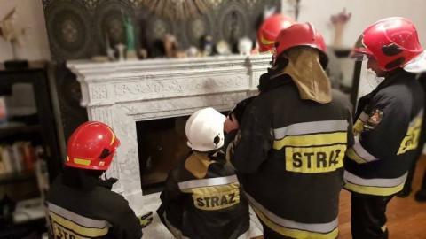 Sowa utknęła w kominku. Strażacy uratowali jej życie