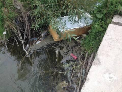 Nasze interwencje: Kamienica tonie w śmieciach, a my się tu kąpiemy