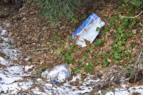 Lasek Falkowski leży odłogiem, nawet nikt go nie sprząta. Gdzie wyjść na spacer z dzieckiem? [ZDJĘCIE/FILM]