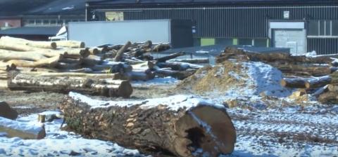 Rżną drewno aż uszy więdną! I tak cały tydzień. Co się dzieje przy Elektrodowej?