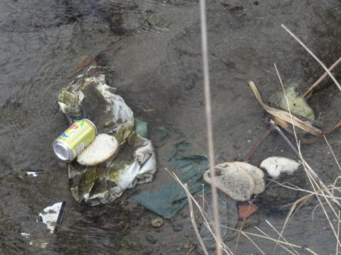 Potok Żeglarka śmieci