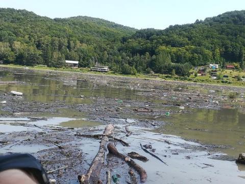 Wielkie sprzątanie Jeziora Rożnowskiego. Czy woda nadaje się do kąpieli?