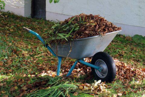 Stary Sącz: Są dodatkowe terminy wywozu odpadów zielonych