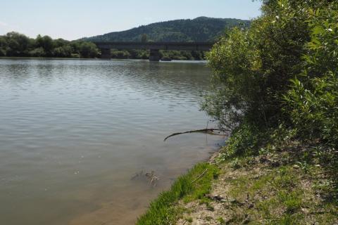 W Kurowie z Dunajca wyłowiono ciało. Czy to zaginiony Radosław Albrycht?