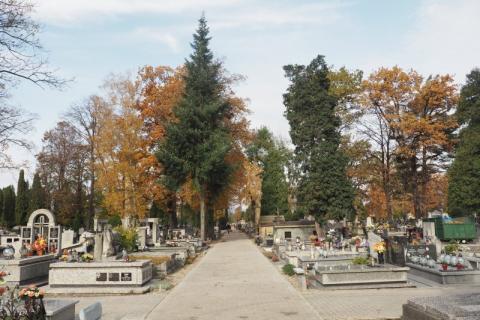 Zmiana organizacji ruchu przy cmentarzach. Fot. Iga Michalec