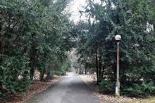 Śmierć w gorlickim parku. Nie żyje 59-letni mężczyzna