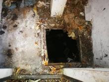 Makabryczne odkrycie w Nowym Sączu. W szambie znaleziono zwłoki mężczyzny