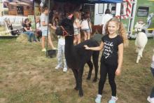Alpaki skradły serca najmłodszych uczestników Agropromocji
