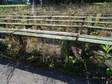 Park Strzelecki tonie w szkle i chwastach