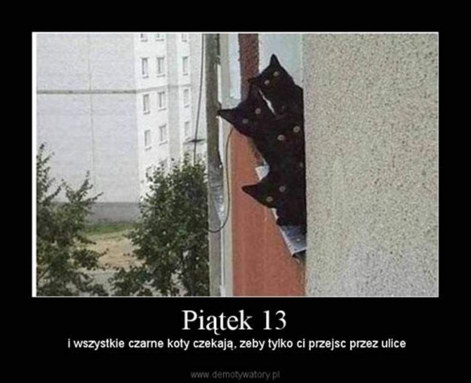 W Piątek Trzynastego Wszystkie Czarne Koty Czekają żeby Przejść