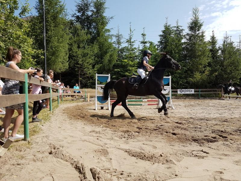 Zawody jeździeckie, fot. Sebastian Słowiński