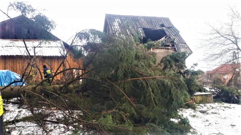 Wichura zebrała żniwo. Połamane drzewa, uszkodzone dachy, zerwane linie...