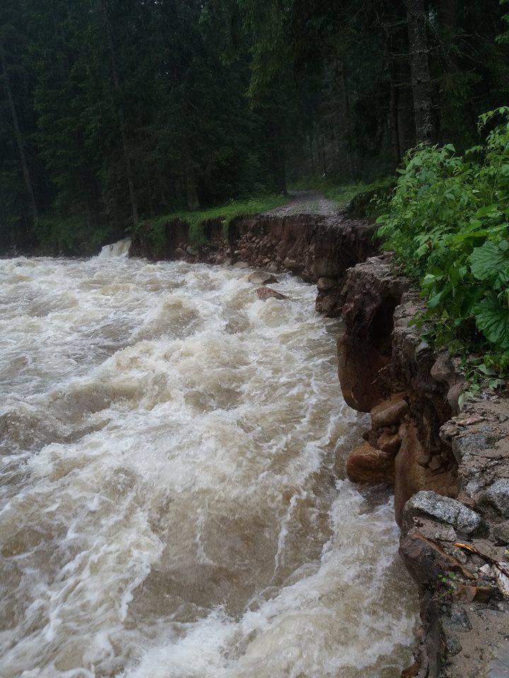 Część szlaków  tatrzańskich została całkowicie zamknięta. Od 19 lipca do odwołania. Fot. TPN