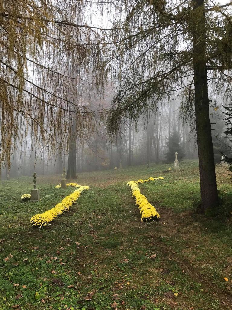 Fot. UG Łabowa