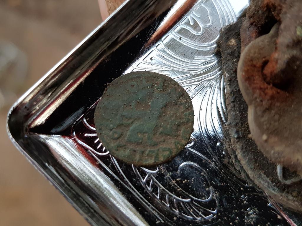 """Monety z 1660 roku! Takie skarby kryje ziemia wokół """"Przystani"""""""