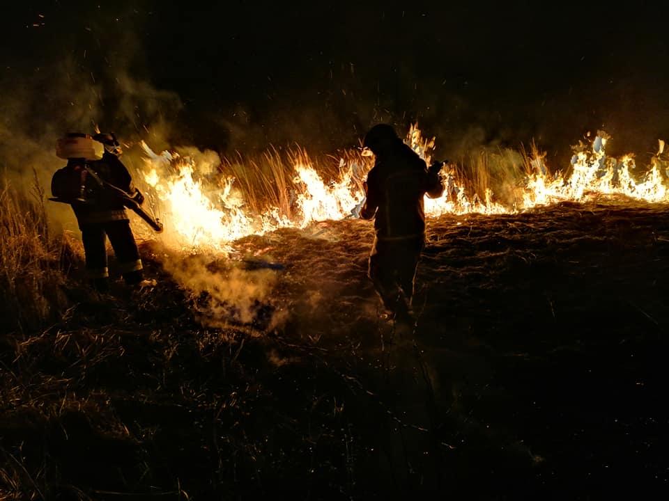54 strażaków walczyło ze skutkami ludzkiej tępoty