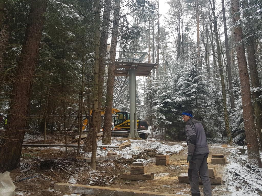 18 metrów długości, 5 ton wagi! I montaż pod samymi czubkami drzew!