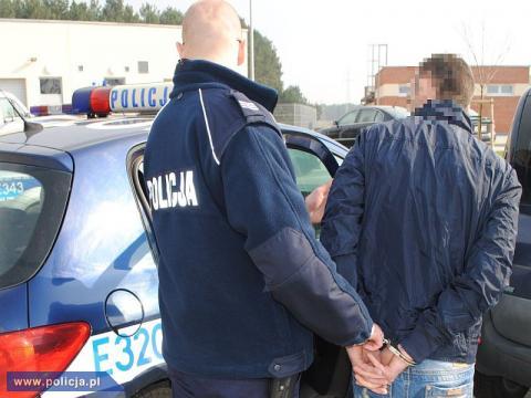 Seryjny złodziej jest już w rękach policji. Usłyszał aż 11 zarzutów