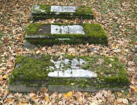 stary cmentarz w nowym sączu