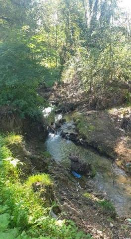 Potok Moszczeniczanka sieje spustoszenie a trzeba majątku na jego regulację