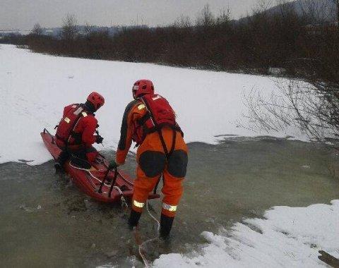 strażacy ratowali łabędzie