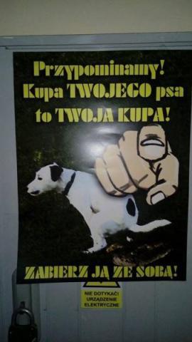 Kupa Twojego psa, to Twoja kupa! Na kogoś jeszcze działają takie hasła?