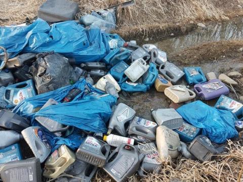 Nowy Sącz: ile zapłacimy za likwidację dzikich wysypisk śmieci w mieście?