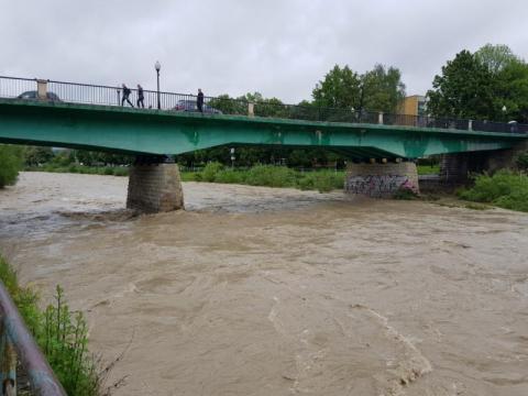 Rzeka Kamienica w Nowym Sączu, fot. Iga Michalec