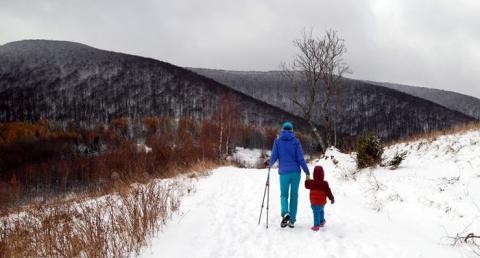 Pogoda na weekend. Zamiast śniegu, spacer w słońcu