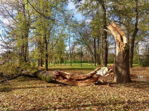 Wichura nad Sądecczyzną. Połamane drzewa, zerwane linie, uszkodzone budynki