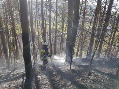 Płoną lasy na Sądecczyźnie. Strażacy mają pełnę ręce roboty [ZDJĘCIA]