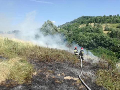 Wielki pożar w Mszanie Dolnej. Spłonęły 2 hektary trawy