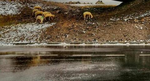 Lato w kalendarzu, w górach już śnieg, cyklon idzie do Polski