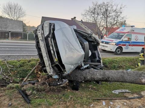 Samochód uderzył w drzewo. Kierowca zakleszczony w aucie [ZDJĘCIA]