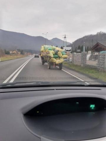 Na bok żarty i kpiny, bez tych koni śmieci w gminie Rytro nie da się wywieźć