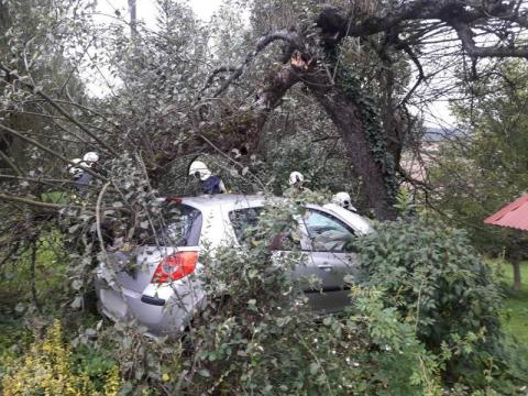 Stary Sącz i Mostki - samochód skosił drzewo