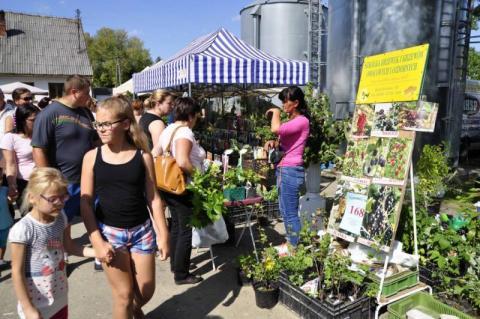 Agropromocji w Nawojowej nie będzie. Targowa impreza padła ofiarą koronawirusa
