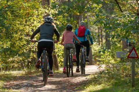 Ścieżka VeloDunajec: atrakcja tylko dla kolarzy czy pomysł na rodzinny wypad?