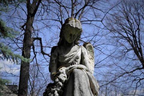 Groby, mogiły i pomniki tworzą księgę życia heroicznego...