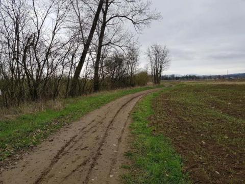 A może tak zrobić trasę rowerową do Mostek? Wlot do EuroVelo już jest