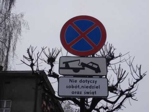 Nowy Sącz: chcecie znów parkować na Długosza? Wybór między dżumą a cholerą