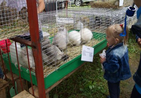 Agropromocja nie tylko dla rolników– jakimi atrakcjami mogły cieszyć się dzieci?