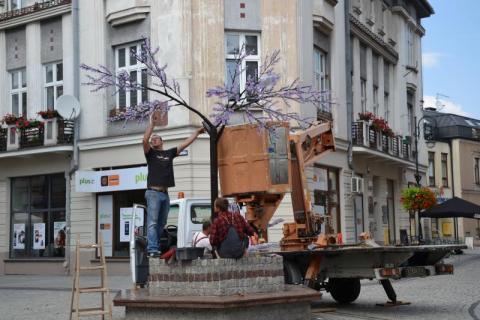 Nowy Sącz: Zamiast świecącej wiśni mamy świecącą brzoskwinię
