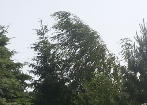 Hula wiatr. I pogoni smogowa mgłę. Ile będzie tego wytchnienia?