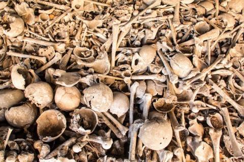 Makabryczne odkrycie na Podhalu. Znaleźli pudła z ludzkimi szczątkami