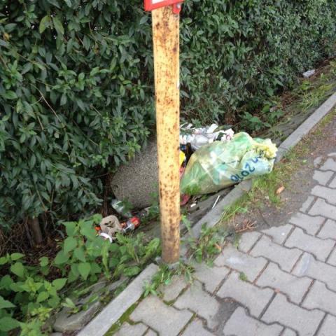 Nowy Sącz: Krakowska tonie w śmieciach, bo zamknęli most heleński?