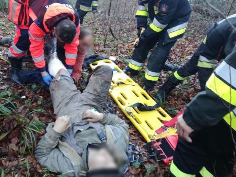 Drzewo przywaliło mężczyznę w lesie. Ekstremalna walka ratowników o jego życie
